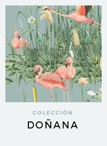 regalos-originales-the-botanical-nook-decoracion-coleccion-ilustraciones-botanicas-DONANA