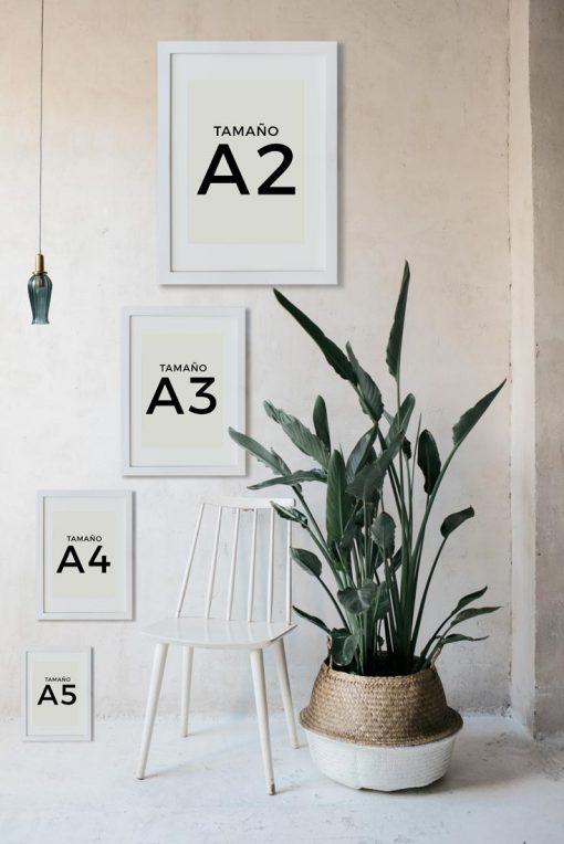 tamano-Dina3-a4-a5-laminas-botanicas