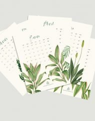 Calendario 2019 laminas sueltas plantas ilustraciones