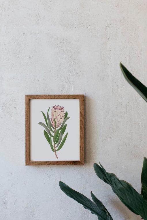cuadro de madera para dormitorio con dibujo en acuarela de protea