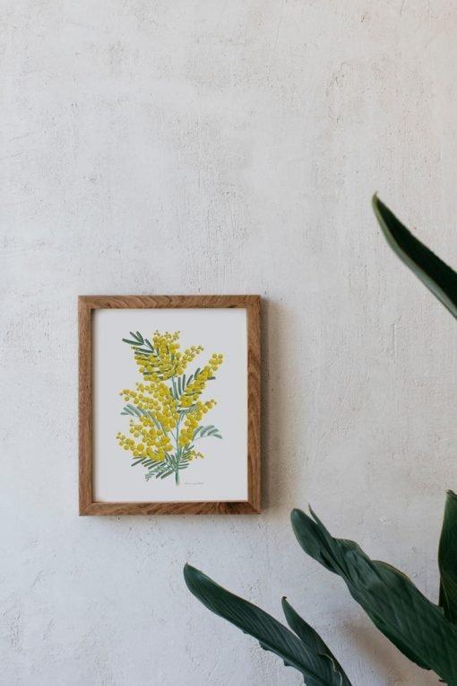 laminas botanicas decorativas MIMOSAS AMARILLAS marco madera