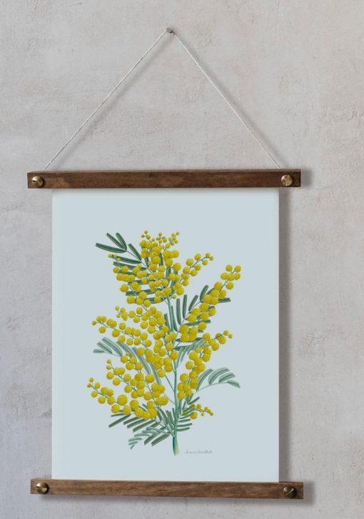 laminas botanicas para colgar MIMOSAS AMARILLAS bastidor