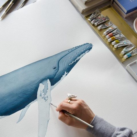 dibujo ballena para invitacion de boda marinera