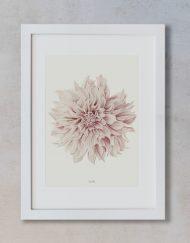 Lamina decorativa para cuadro A3 Dahlia