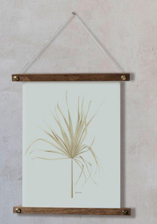 Dibujo para cuadros con Palmera Arecaceae