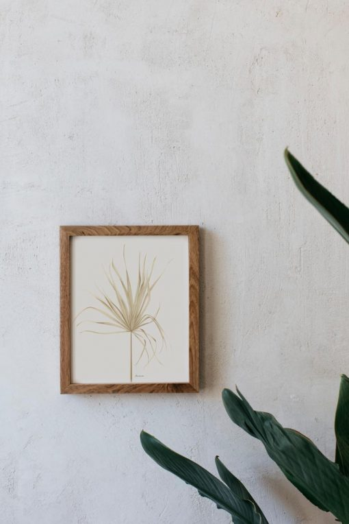 Marco dormitorio con lámina Palmera Arecaceae