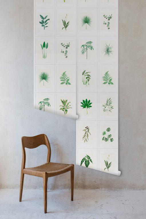 papel pintado plantas rollos