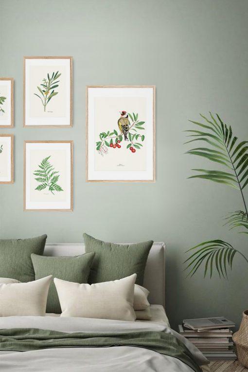 cuadros para dormitorio con pájaro jirguero