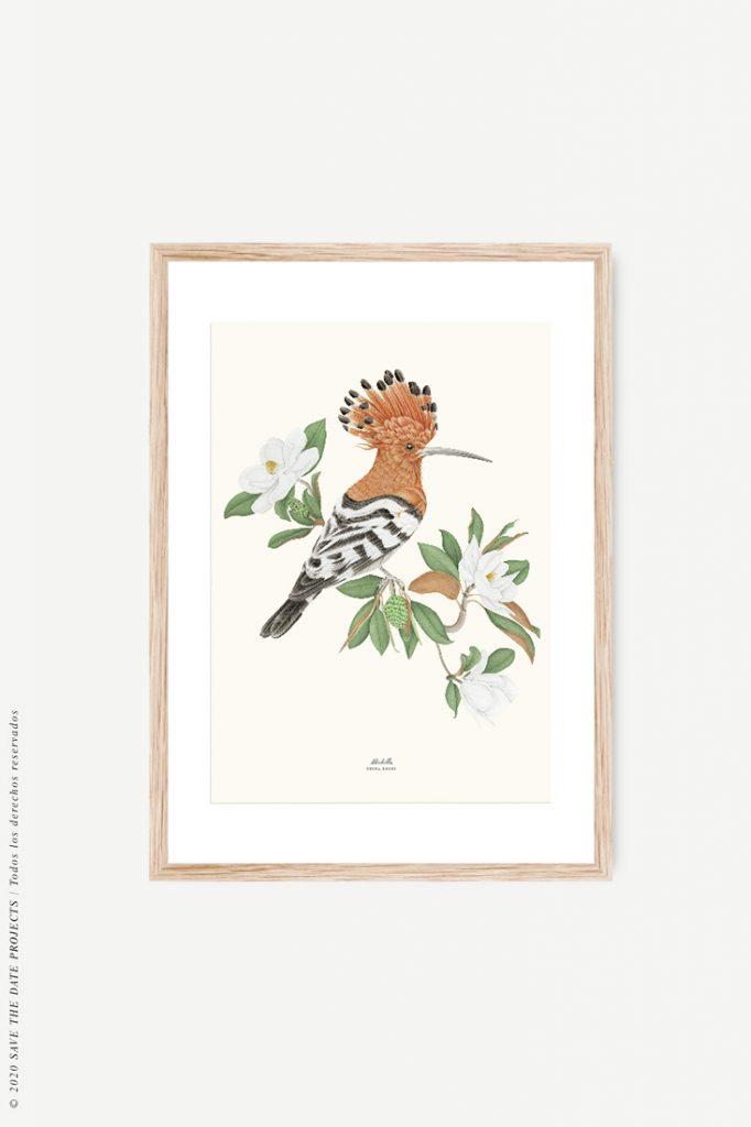 cuadro de pájaro con marco madera de roble