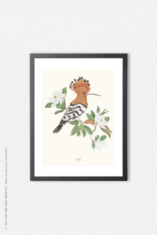 póster de pájaro vintage