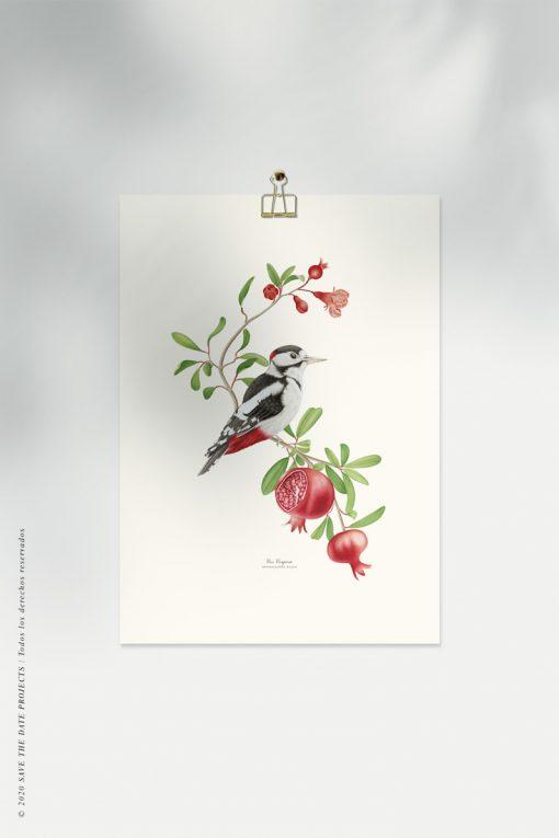 póster vintage de pájaro carpintero