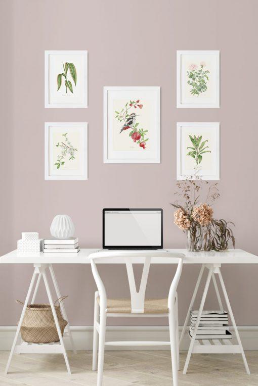 mural de cuadros relajantes con pájaros, plantas y flores para alegrarte el día