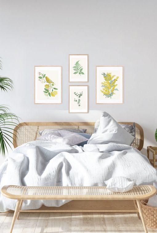 lamina mimosa y verderon mural cuadros dormitorio pajaro