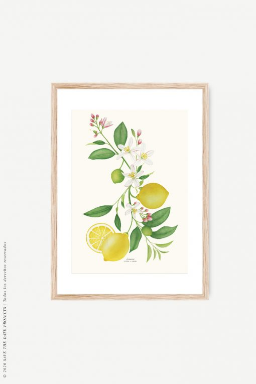 marco madera y limonero