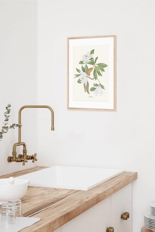 póster para decorar tu cocina con dibujo vintage de magnolia
