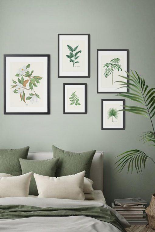 mural de cuadros con plantas y naturaleza relajante