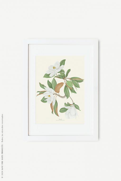 cuadro blanco con magnolio acuarela