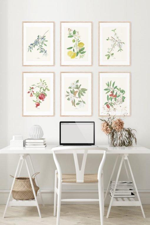 composición cuadros frutales