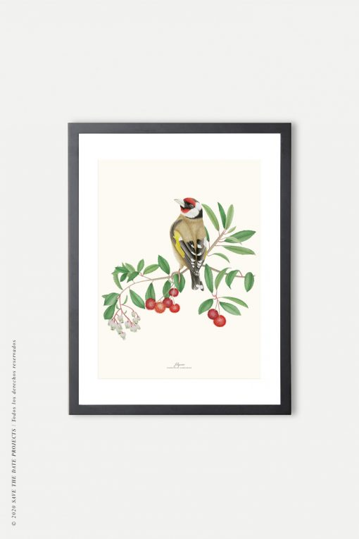 marco negro para lámina de pájaro jilguero