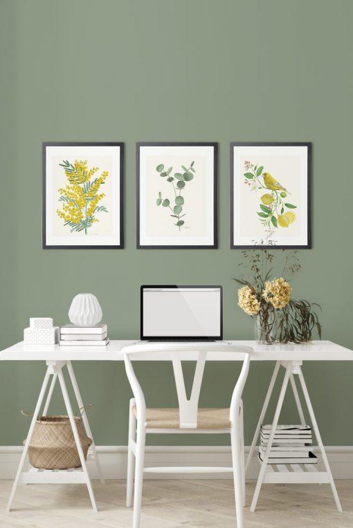 mural de cuadros PAJARO verderon escritorio