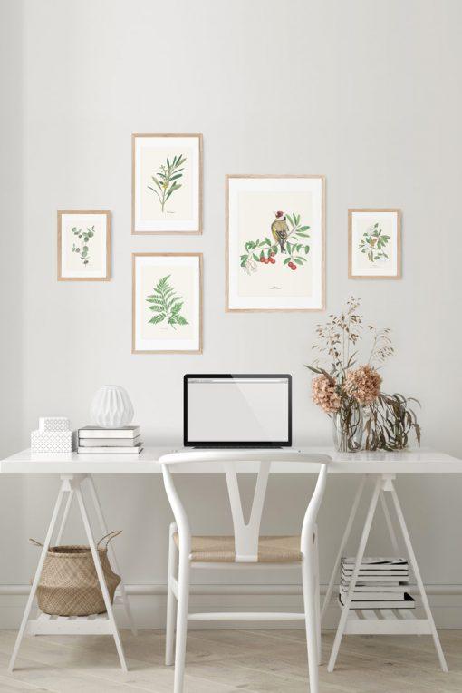 mural de cuadros relajantes con naturaleza y con pajaro jilguero en acuarela