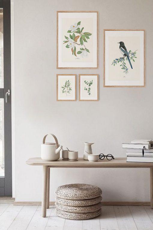 pared con cuadros de madera decoracion urraca pajaro