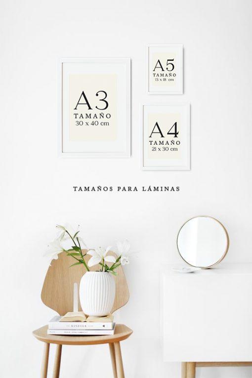 marcos blancos para laminas de distintos tamaños