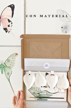 taller online acuarela mariposas con material