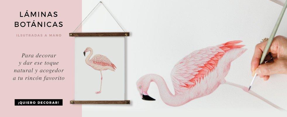 Dibujos flamenco a mano lamina HOME-destacado-cuadrado-laminas-botanicas